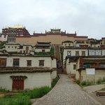 Nongdao Town