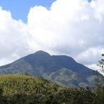 Kahuzi-Biega National Park