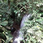 waterfall on morning hike on hotel grounds
