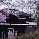 Kaikoen Photo