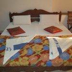 Hotel Jaisal View