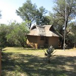 Madikwe River Lodge 8