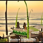 Photo of Monkey Beach Club
