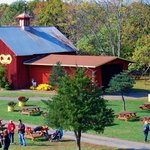 Our beautiful red barn can be yours to rent for a group party!