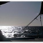 Foto de St Maarten Fun Cat Caribbean Boat Charter