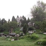Kaifeng Forest Park