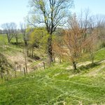 Meadows at Glasbern