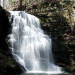 Bushkill Falls Park