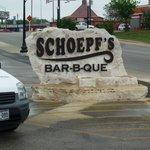 Schoepf's