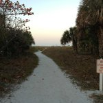 Path to Siesta Key beach access #10