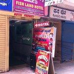 Parvati Fish Land