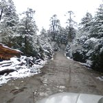Drive towards Yumthang Valley - North sikkim