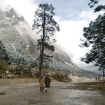 Yumthang Valley - North sikkim
