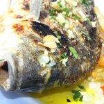 vis, vis, vis, heerlijke vis