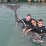 Devaney dolphin day