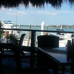 View of the marina from our table@ Dolphin Tiki