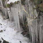 icicles at Acharn waterfall
