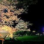 夜桜と鶴ヶ城