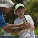 Cayman Turtle Farm: Island Wildlife Encounter