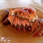 I am afraid this lobster tail has officially made all other lobster tails second fiddle.  Best e