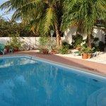 Garten & Pool