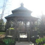 Courtyard - gazebo