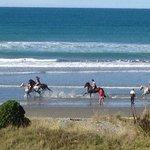 horses on the beach, spectacular sight