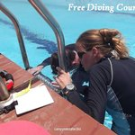 free diving lessons
