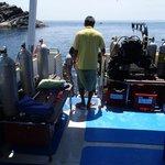 Sea Bees catamaran diving deck