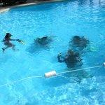 pool splash - dive