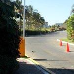 a huge iguana at the hotel entrance