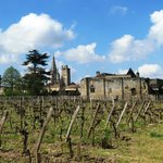 View of village of Saint Emilion from the vineyard