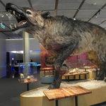 Museon prehistoric predator
