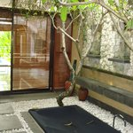 courtyard with a jaccuzi