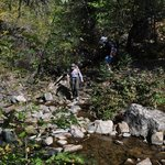 The many creek crossings on the trail