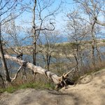 Sunken Meadow, trail view