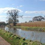 walk along the canal near Creech
