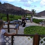 Thatched roofs over picnic tables by the sea at Grape Tree