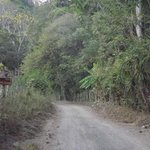 The road to SolyLuna