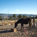 Photo de Arrow's Ridge