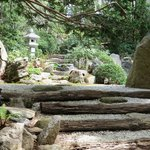 Tranquil Trail at Japanese Stroll Garden