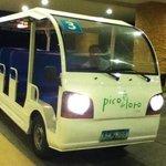 eco friendly free ride