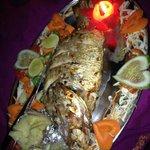 Fresh Fish!!