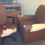 room 315 furniture. they must have dug this out of the dumpster.