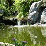 Enchanting waterfall & pond