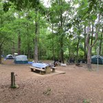 Campsites sites 102 and 104