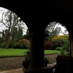Looking out into the gardens from the veranda