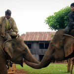 Elephant riding with the bunong community