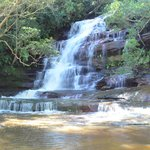 Somersby Falls Picnic Grounds