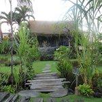 My House 2